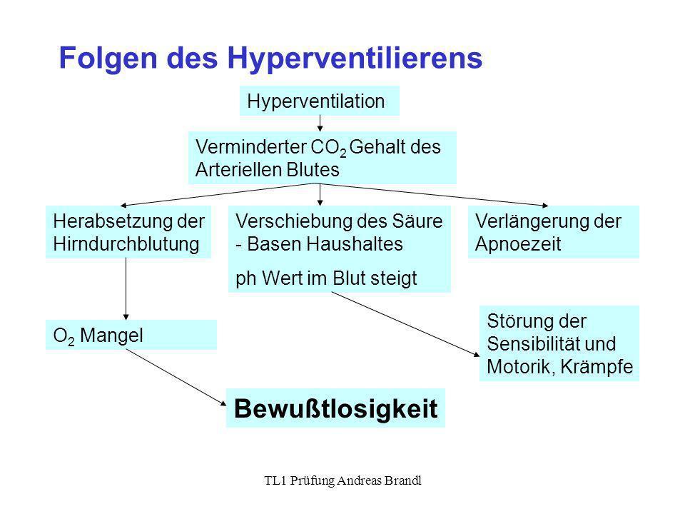 TL1 Prüfung Andreas Brandl Folgen des Hyperventilierens Hyperventilation Verminderter CO 2 Gehalt des Arteriellen Blutes Verschiebung des Säure - Base