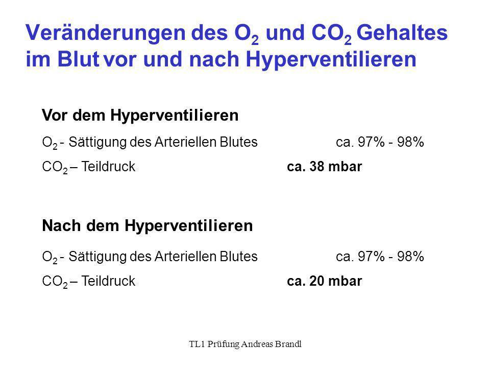 TL1 Prüfung Andreas Brandl Veränderungen des O 2 und CO 2 Gehaltes im Blut vor und nach Hyperventilieren Vor dem Hyperventilieren Nach dem Hyperventil