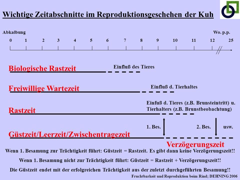 Wichtige Zeitabschnitte im Reproduktionsgeschehen der Kuh 0 1 2 3 4 5 6 7 8 9 10 11 12 25 Abkalbung Biologische Rastzeit Einfluß des Tieres Wo. p.p. F