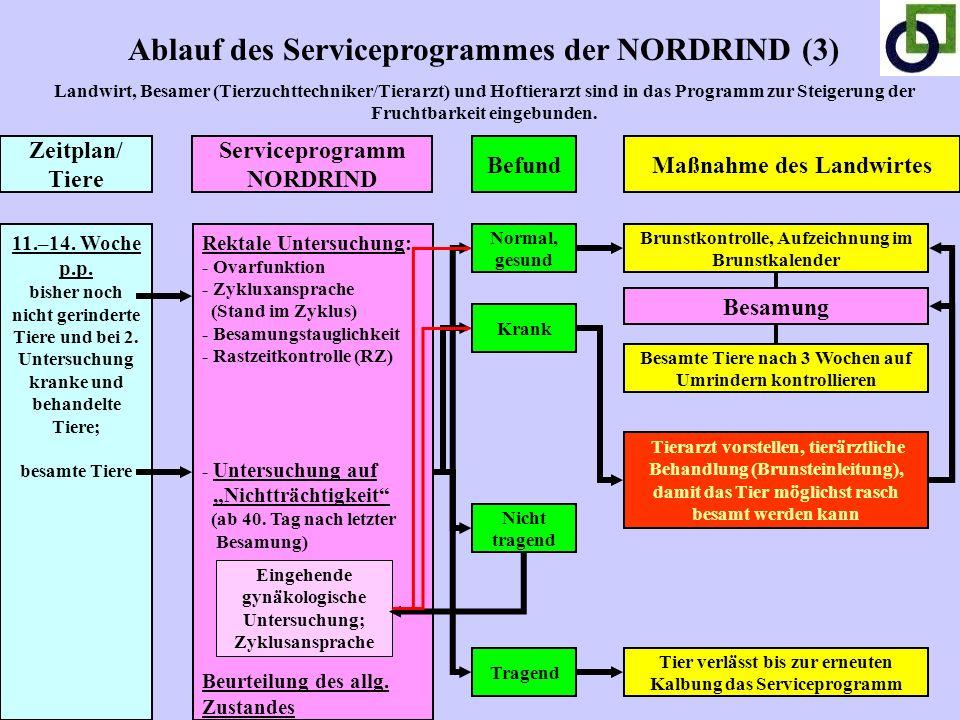 Ablauf des Serviceprogrammes der NORDRIND (3) Landwirt, Besamer (Tierzuchttechniker/Tierarzt) und Hoftierarzt sind in das Programm zur Steigerung der