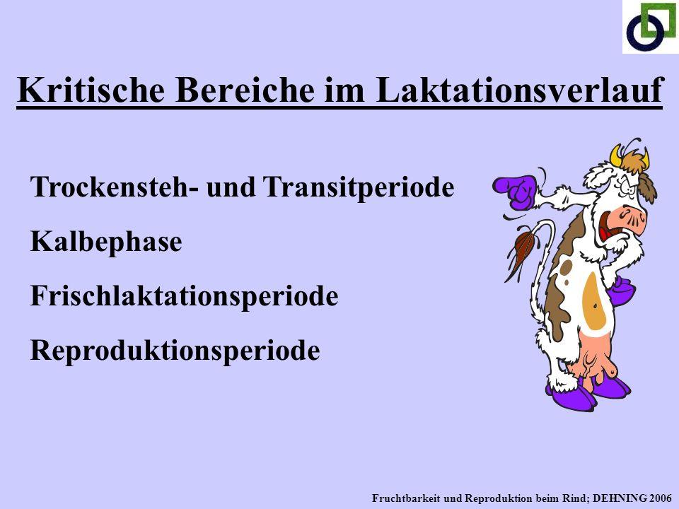 Kritische Bereiche im Laktationsverlauf Trockensteh- und Transitperiode Kalbephase Frischlaktationsperiode Reproduktionsperiode Fruchtbarkeit und Repr