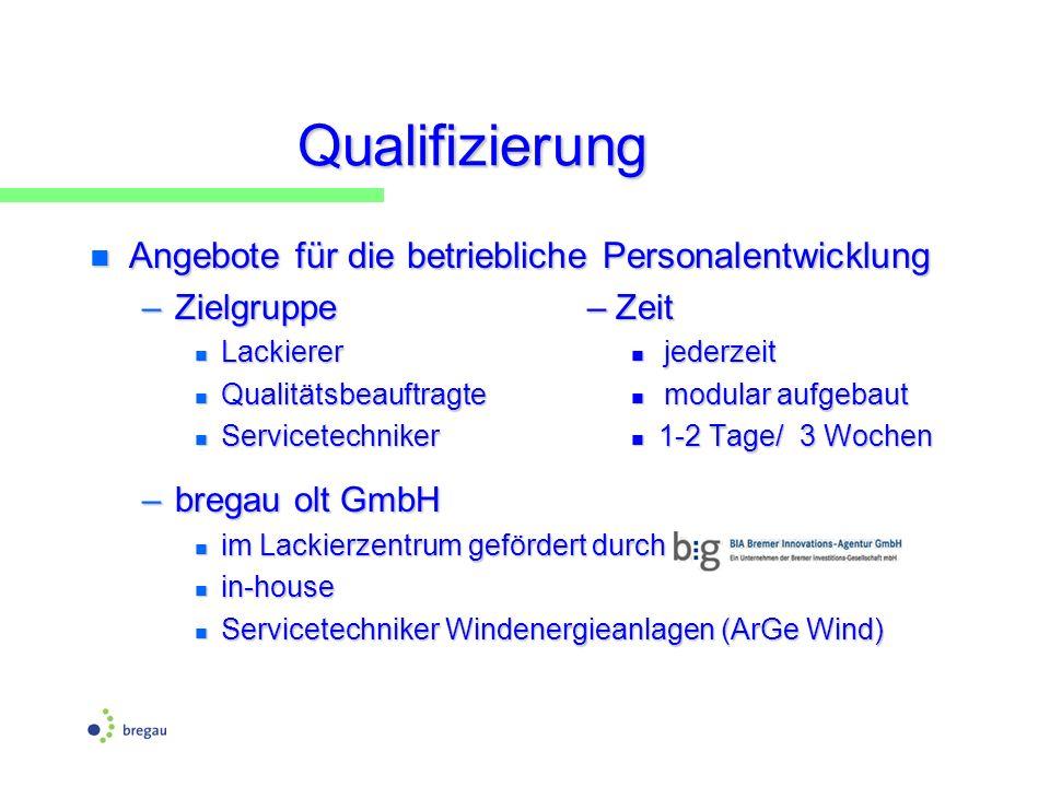 Qualifizierung n Angebote für die betriebliche Personalentwicklung –Zielgruppe – Zeit n Lackierer jederzeit n Qualitätsbeauftragte modular aufgebaut n