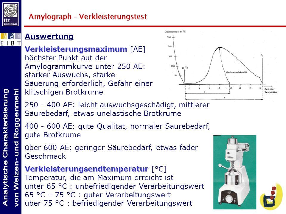 Auswertung Verkleisterungsmaximum Verkleisterungsmaximum [AE] höchster Punkt auf der Amylogrammkurve unter 250 AE: starker Auswuchs, starke Säuerung e