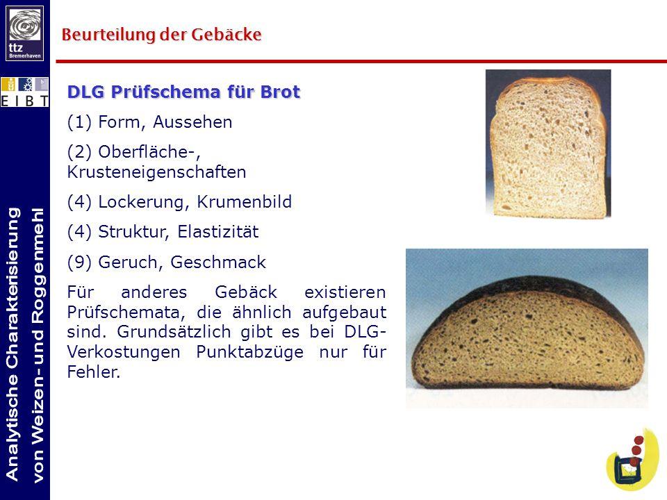 DLG Prüfschema für Brot (1) Form, Aussehen (2) Oberfläche-, Krusteneigenschaften (4) Lockerung, Krumenbild (4) Struktur, Elastizität (9) Geruch, Gesch