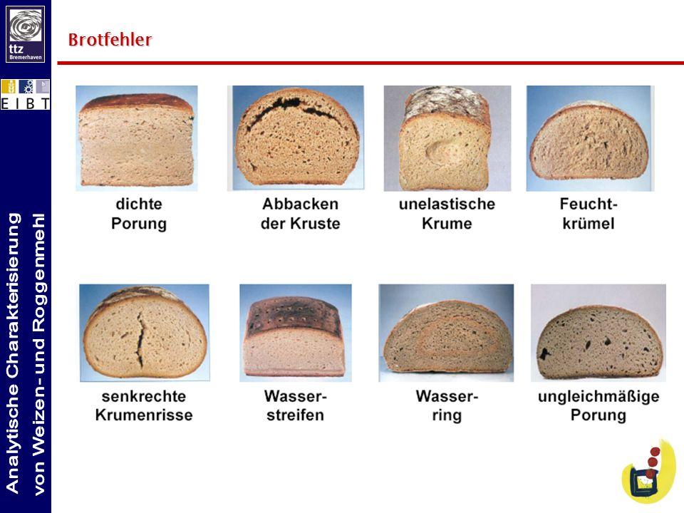 Brotfehler