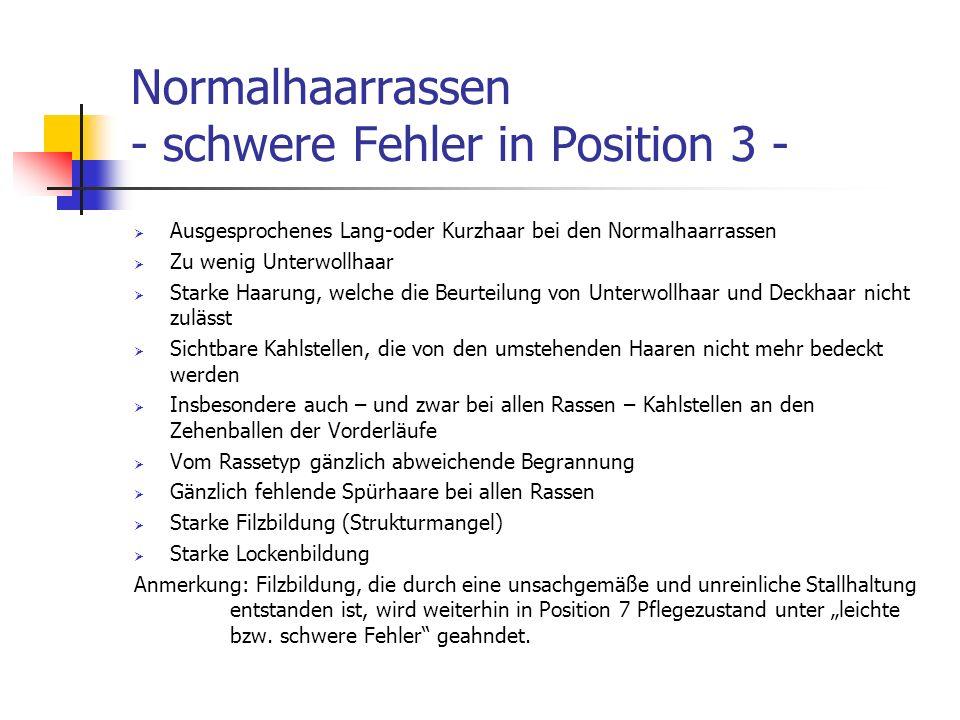 Normalhaarrassen - schwere Fehler in Position 3 - Ausgesprochenes Lang-oder Kurzhaar bei den Normalhaarrassen Zu wenig Unterwollhaar Starke Haarung, w