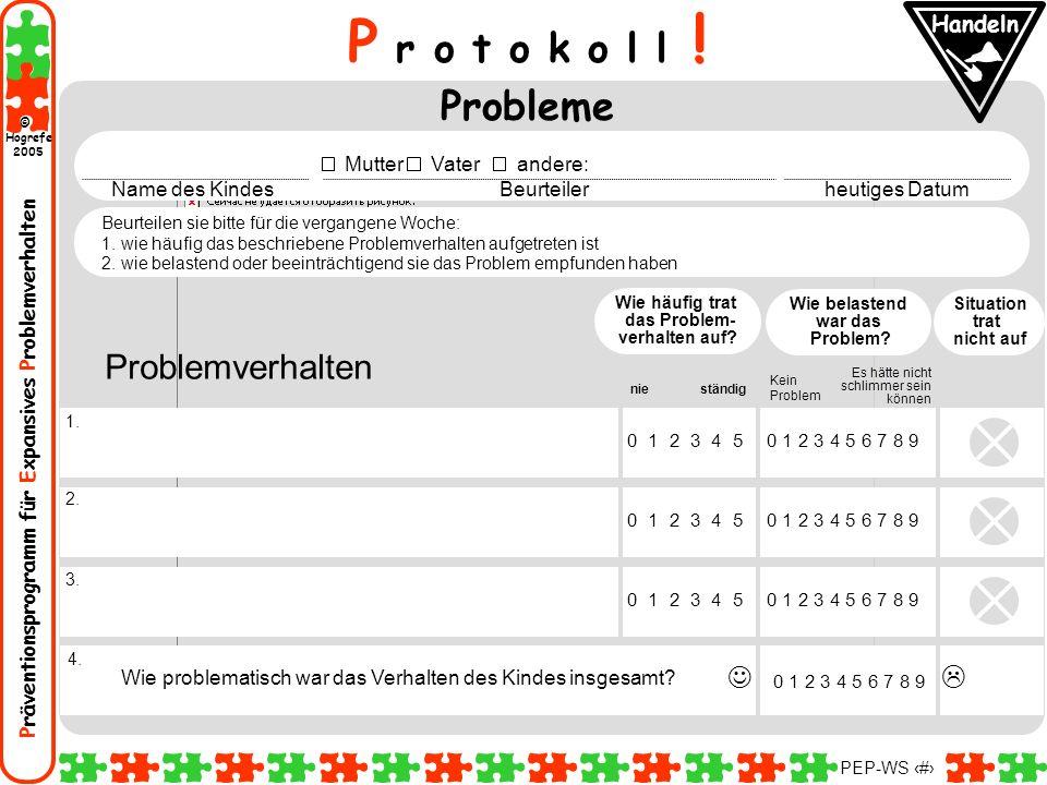 Präventionsprogramm für Expansives Problemverhalten Hogrefe 2005 © PEP-WS 5 P r o t o k o l l ! Probleme Problemverhalten Situation trat nicht auf Wie