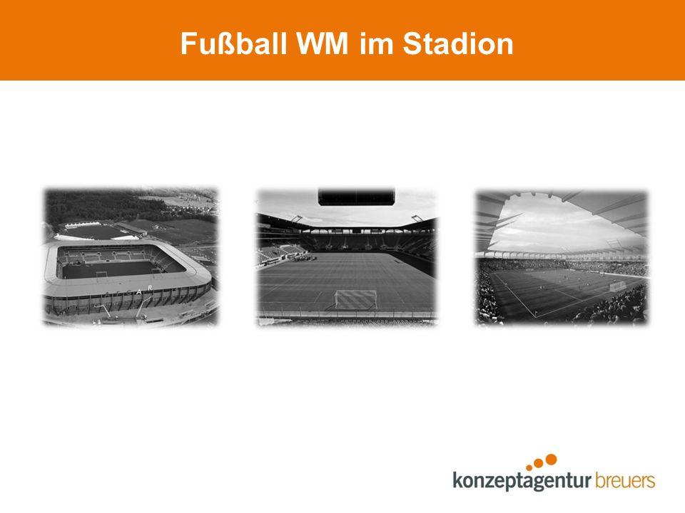 Fußball WM im Stadion