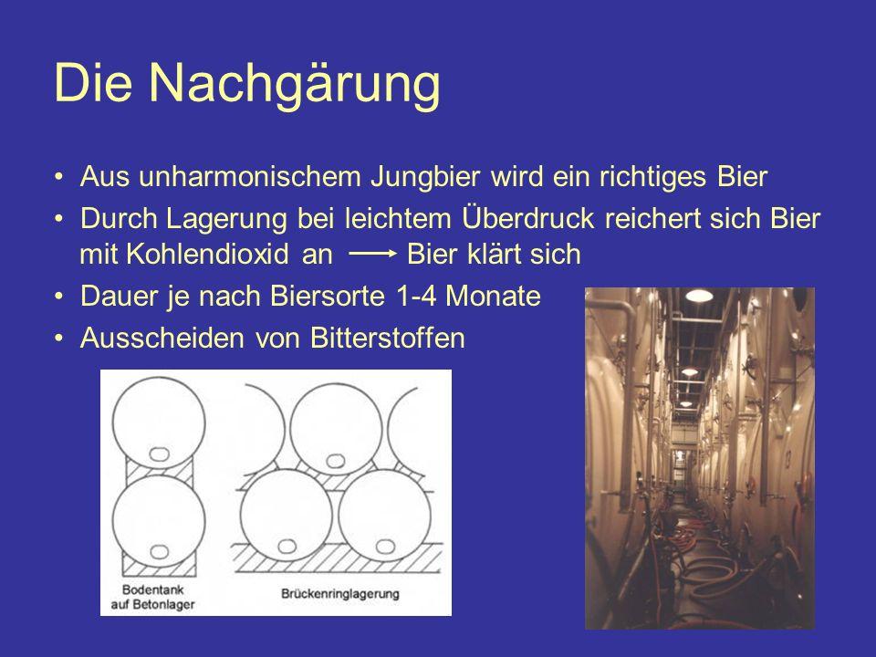 Die Nachgärung Aus unharmonischem Jungbier wird ein richtiges Bier Durch Lagerung bei leichtem Überdruck reichert sich Bier mit Kohlendioxid an Bier klärt sich Dauer je nach Biersorte 1-4 Monate Ausscheiden von Bitterstoffen