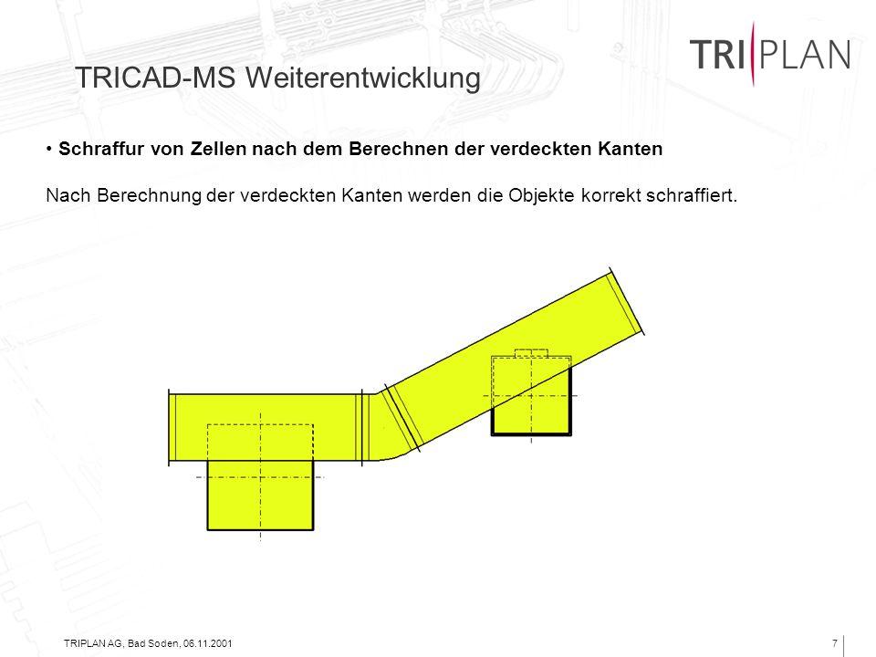 TRIPLAN AG, Bad Soden, 06.11.20017 Schraffur von Zellen nach dem Berechnen der verdeckten Kanten Nach Berechnung der verdeckten Kanten werden die Obje