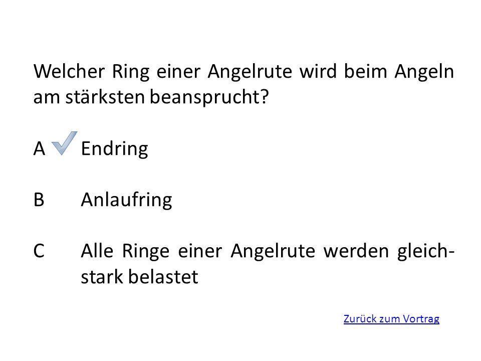 Zurück zum Vortrag Welcher Ring einer Angelrute wird beim Angeln am stärksten beansprucht? AEndring BAnlaufring CAlle Ringe einer Angelrute werden gle