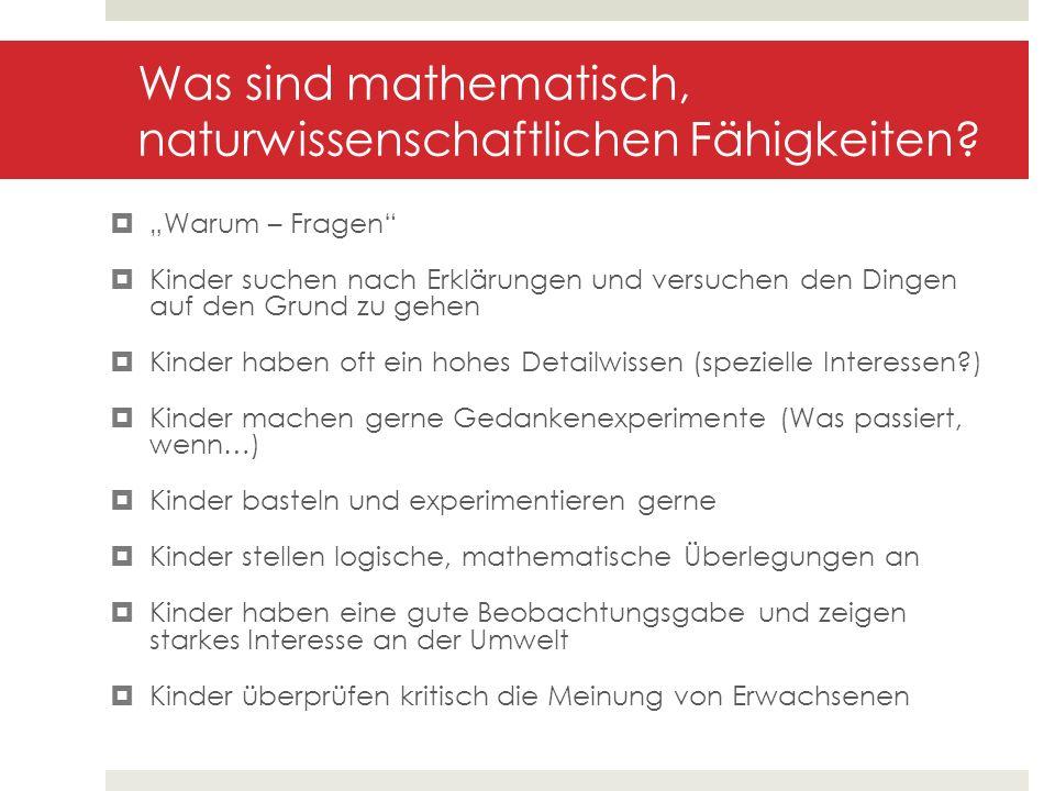 Was sind mathematisch, naturwissenschaftlichen Fähigkeiten? Warum – Fragen Kinder suchen nach Erklärungen und versuchen den Dingen auf den Grund zu ge