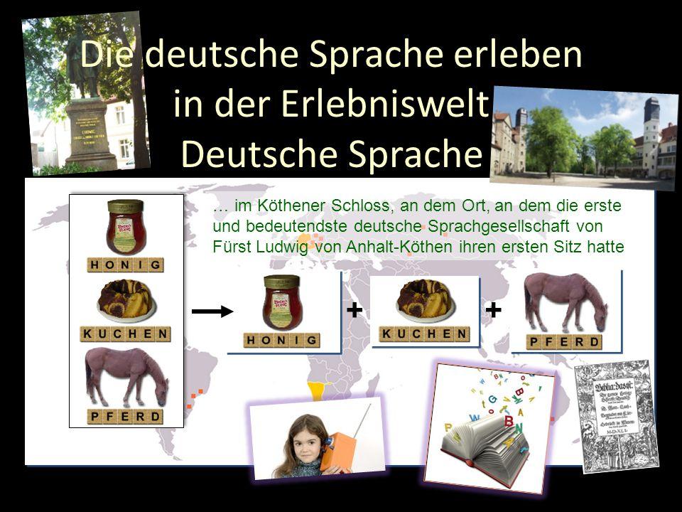 ++ … im Köthener Schloss, an dem Ort, an dem die erste und bedeutendste deutsche Sprachgesellschaft von Fürst Ludwig von Anhalt-Köthen ihren ersten Si