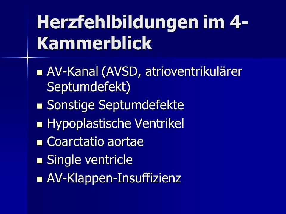 Herzfehlbildungen im 4- Kammerblick AV-Kanal (AVSD, atrioventrikulärer Septumdefekt) AV-Kanal (AVSD, atrioventrikulärer Septumdefekt) Sonstige Septumd