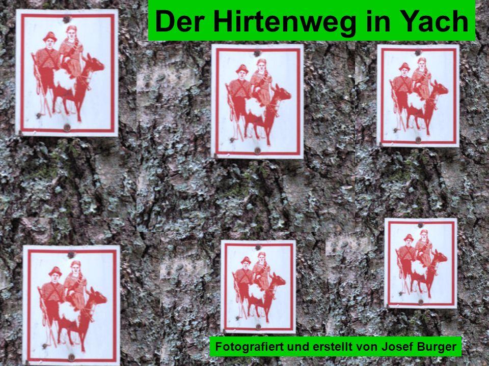 Fotografiert und erstellt von Josef Burger Der Hirtenweg in Yach