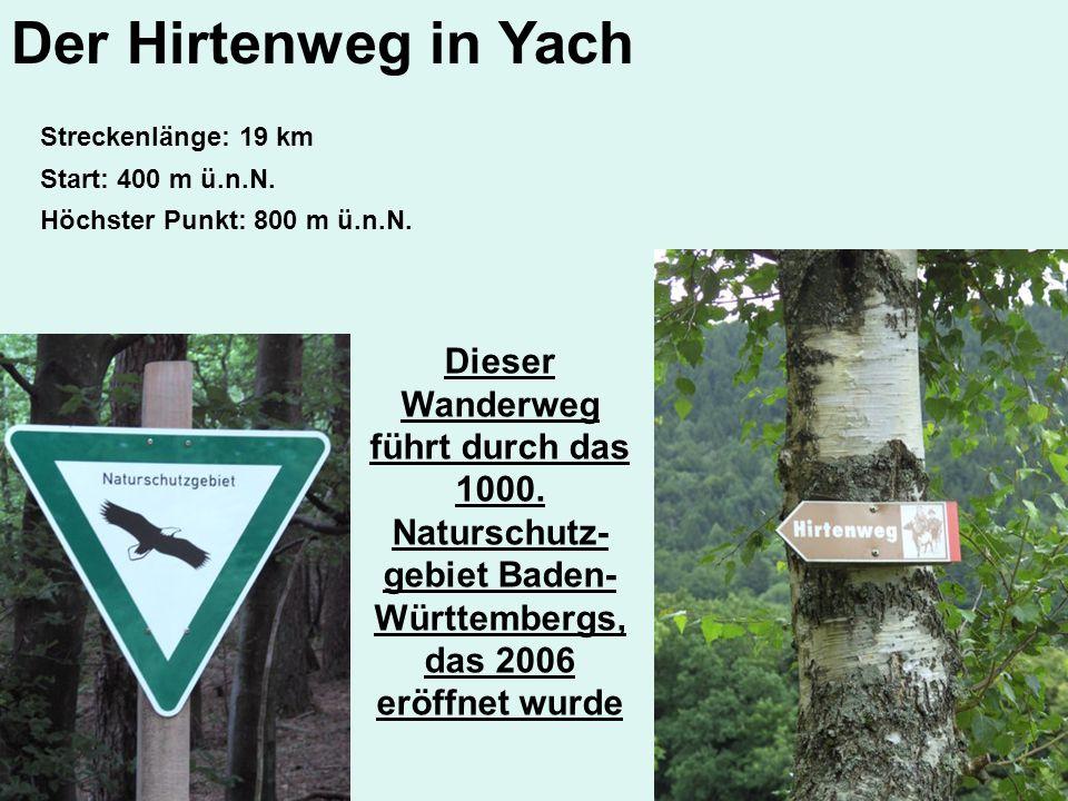 Streckenlänge: 19 km Höchster Punkt: 800 m ü.n.N. Dieser Wanderweg führt durch das 1000. Naturschutz- gebiet Baden- Württembergs, das 2006 eröffnet wu
