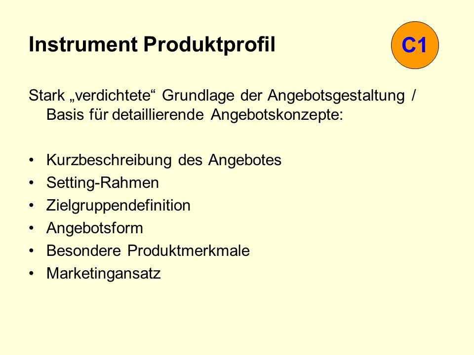 Instrument Produktprofil Stark verdichtete Grundlage der Angebotsgestaltung / Basis für detaillierende Angebotskonzepte: Kurzbeschreibung des Angebote