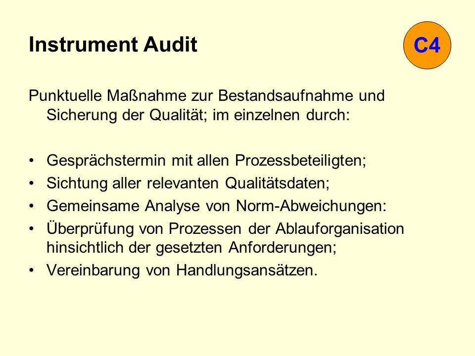 Instrument Audit Punktuelle Maßnahme zur Bestandsaufnahme und Sicherung der Qualität; im einzelnen durch: Gesprächstermin mit allen Prozessbeteiligten