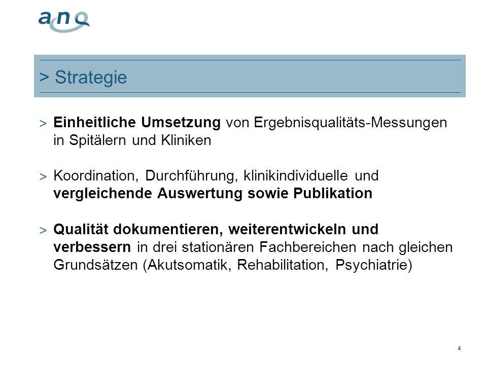 4 > Strategie ˃ Einheitliche Umsetzung von Ergebnisqualitäts-Messungen in Spitälern und Kliniken ˃ Koordination, Durchführung, klinikindividuelle und