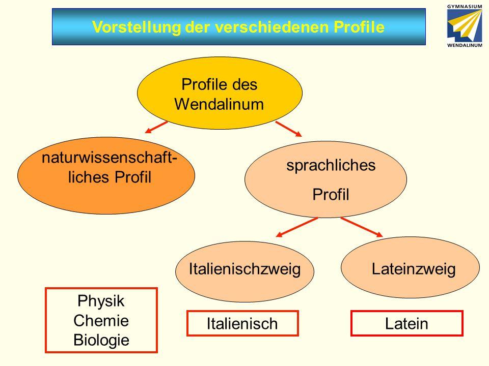 Vorstellung der verschiedenen Profile Profile des Wendalinum naturwissenschaft- liches Profil sprachliches Profil ItalienischzweigLateinzweig Italienisch Physik Chemie Biologie Latein