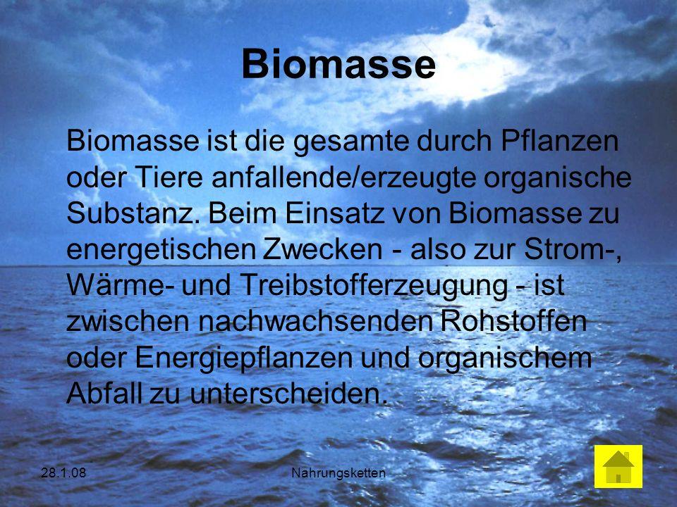 28.1.08Nahrungsketten Biomasse Biomasse ist die gesamte durch Pflanzen oder Tiere anfallende/erzeugte organische Substanz. Beim Einsatz von Biomasse z