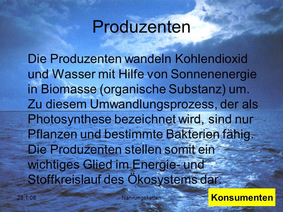 28.1.08Nahrungsketten Produzenten Die Produzenten wandeln Kohlendioxid und Wasser mit Hilfe von Sonnenenergie in Biomasse (organische Substanz) um. Zu