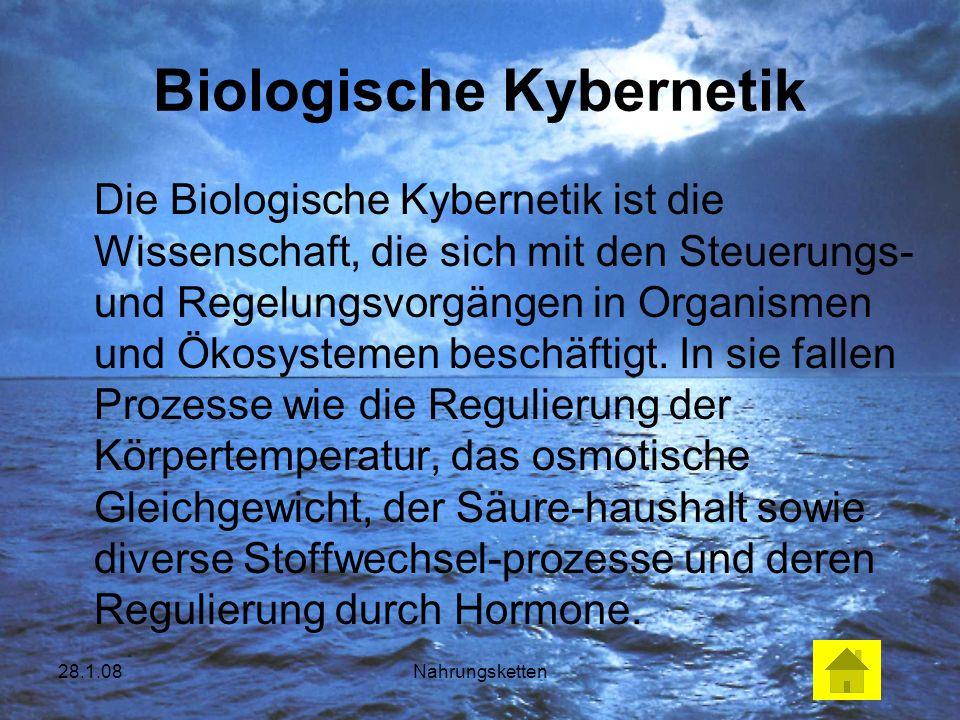 28.1.08Nahrungsketten Biologische Kybernetik Die Biologische Kybernetik ist die Wissenschaft, die sich mit den Steuerungs- und Regelungsvorgängen in O