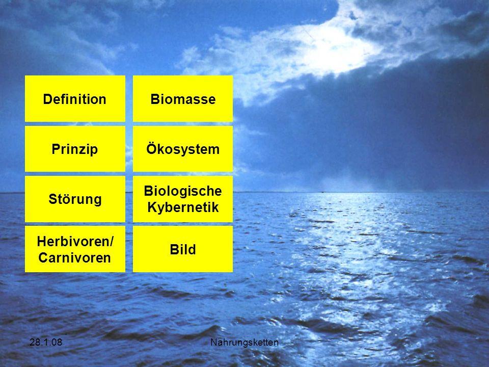 28.1.08Nahrungsketten Konsumenten Alle Konsumenten (Tiere und Menschen) sind direkt oder indirekt auf die Produktion von Biomasse angewiesen.