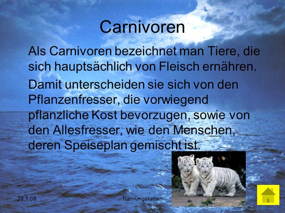 28.1.08Nahrungsketten Carnivoren Als Carnivoren bezeichnet man Tiere, die sich hauptsächlich von Fleisch ernähren. Damit unterscheiden sie sich von de