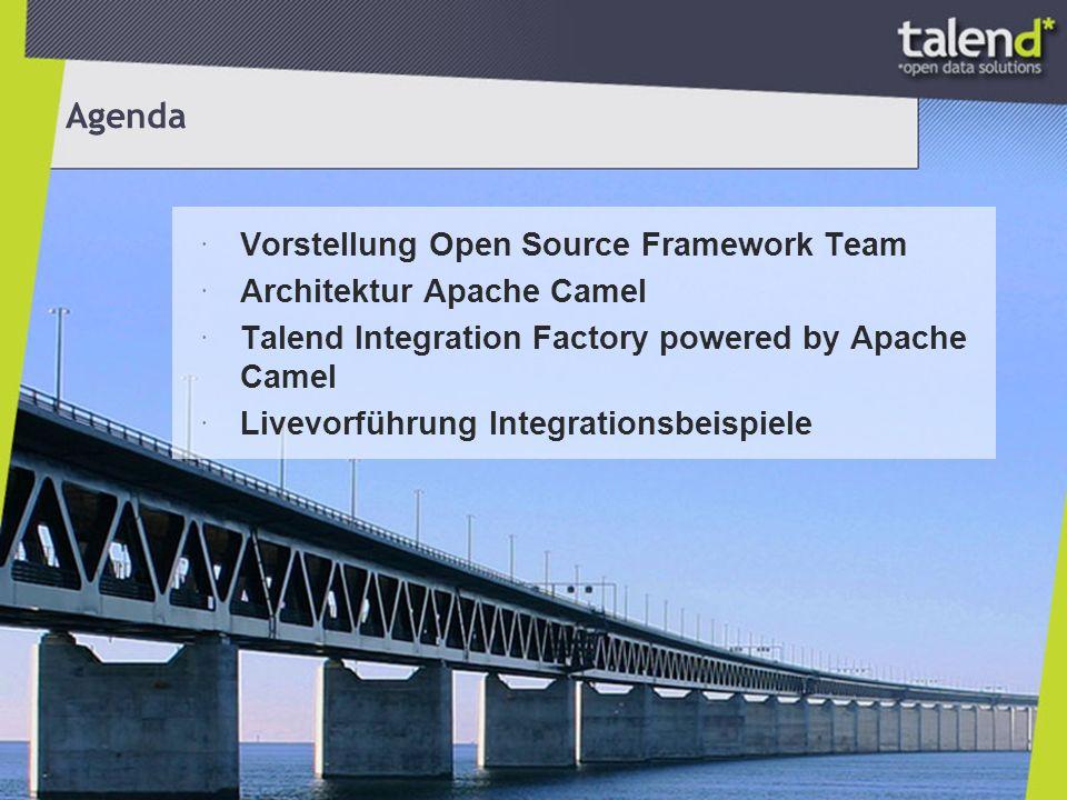 Open Source Framework Team Daniel Kulp VP Open Source Development Team lead Apache CXF (PMC Chair) Apache Maven (PMC Member) Apache Web Services (PMC Member) Apache Servicemix (Committer) … Hadrian Zbarcea Software Architect Apache Camel (PMC Chair) Apache ActiveMQ (Committer) JBoss Drools (Committer) …