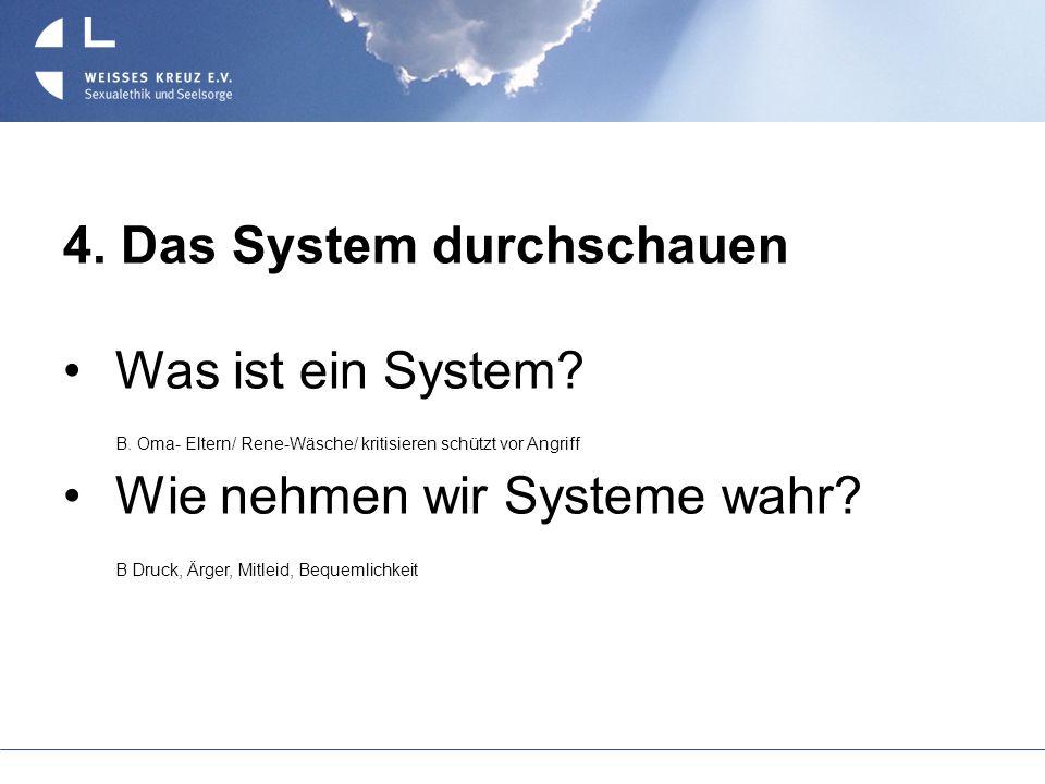 4. Das System durchschauen Was ist ein System? B. Oma- Eltern/ Rene-Wäsche/ kritisieren schützt vor Angriff Wie nehmen wir Systeme wahr? B Druck, Ärge