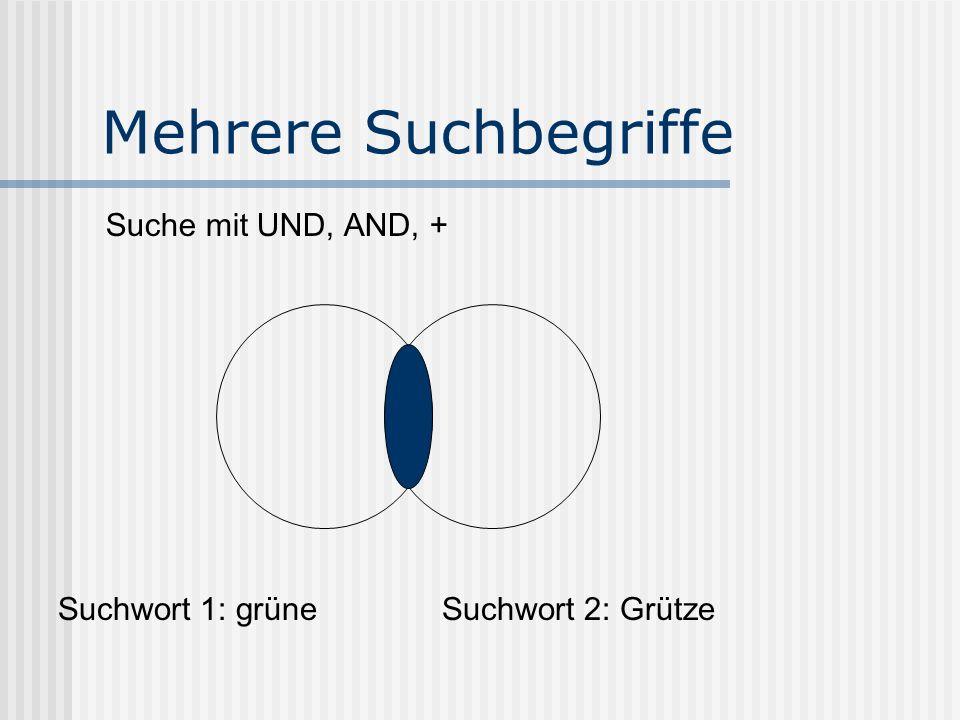 Mehrere Suchbegriffe Suche mit UND, AND, + Suchwort 1: grüneSuchwort 2: Grütze
