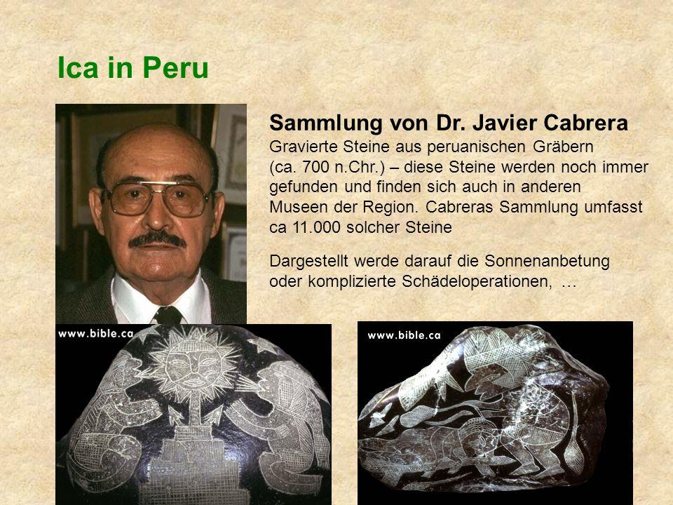 Ica in Peru Sammlung von Dr.Javier Cabrera Gravierte Steine aus peruanischen Gräbern (ca.