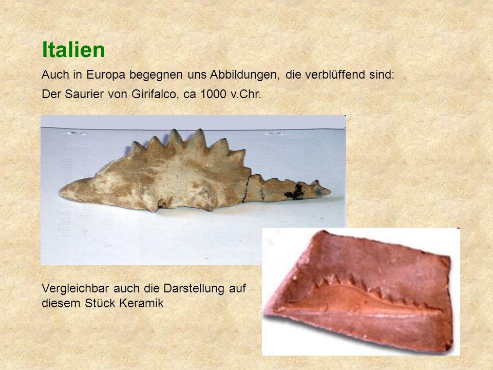 Italien Auch in Europa begegnen uns Abbildungen, die verblüffend sind: Der Saurier von Girifalco, ca 1000 v.Chr.