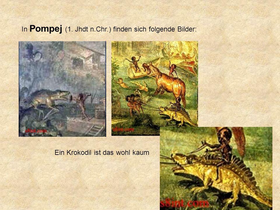 In Pompej (1. Jhdt n.Chr.) finden sich folgende Bilder: Ein Krokodil ist das wohl kaum