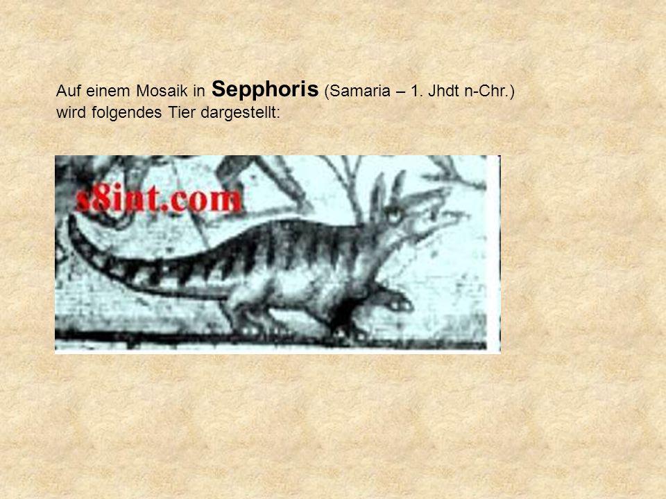 Auf einem Mosaik in Sepphoris (Samaria – 1. Jhdt n-Chr.) wird folgendes Tier dargestellt: