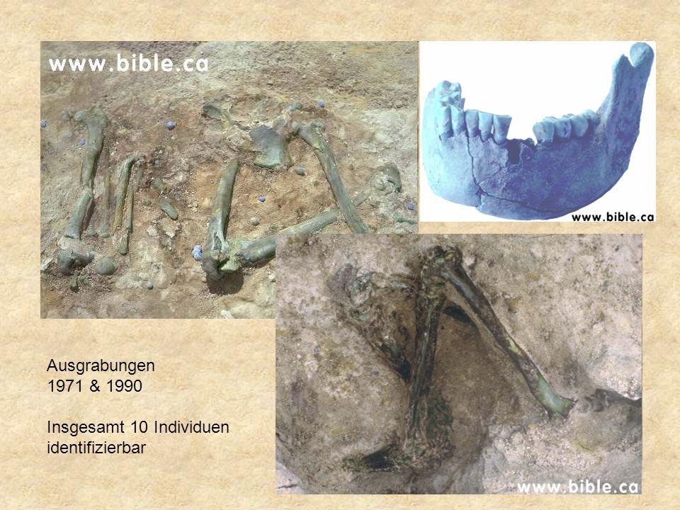 Ausgrabungen 1971 & 1990 Insgesamt 10 Individuen identifizierbar