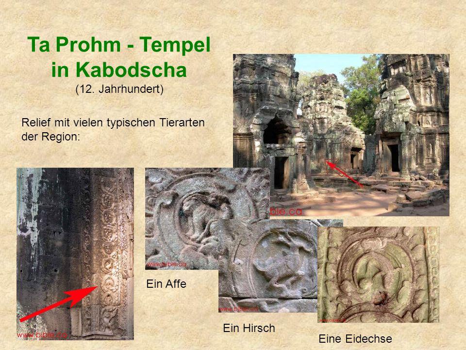 Relief mit vielen typischen Tierarten der Region: Ein Affe Ein Hirsch Eine Eidechse Ta Prohm - Tempel in Kabodscha (12.