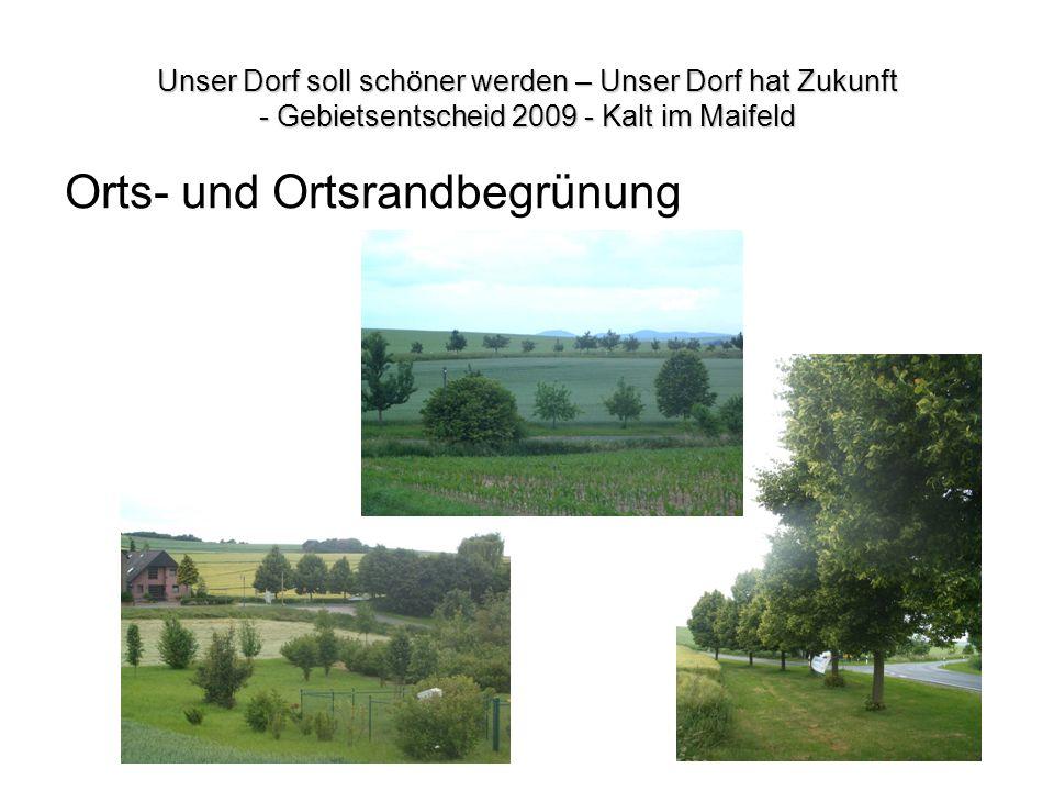 Unser Dorf soll schöner werden – Unser Dorf hat Zukunft - Gebietsentscheid 2009 - Kalt im Maifeld Orts- und Ortsrandbegrünung