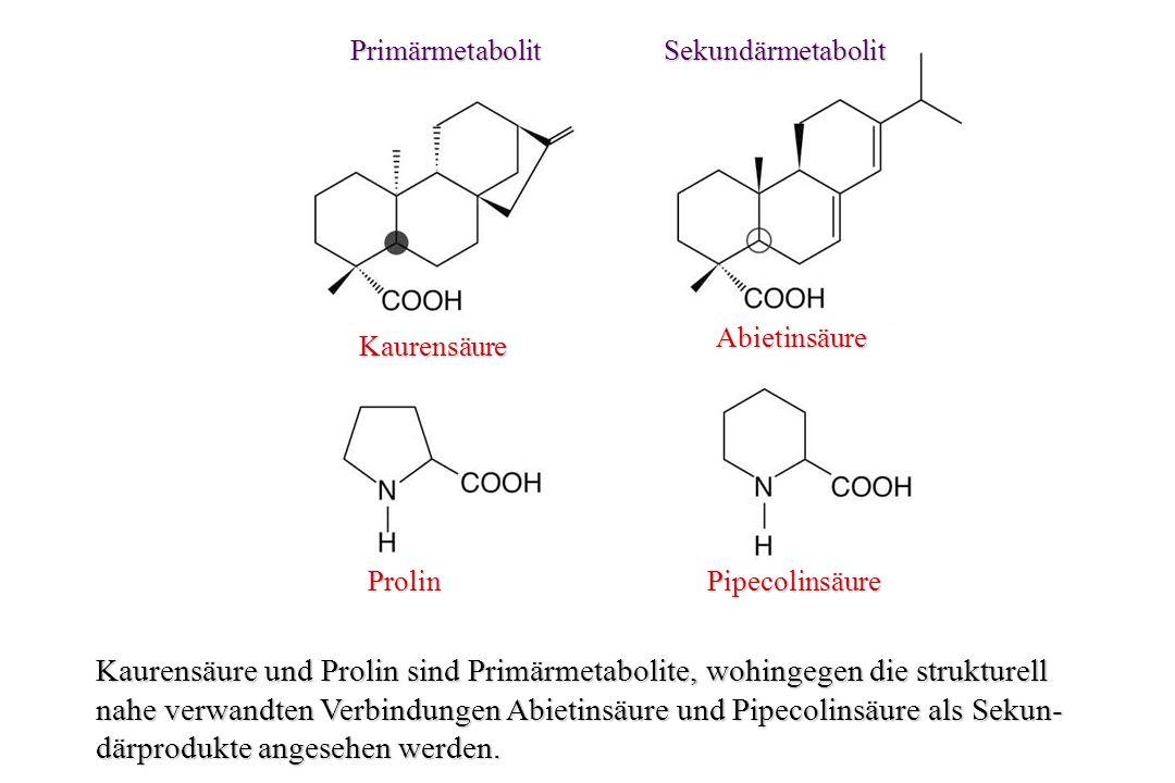 Sekundäre Pflanzenstoffe Einige Gedanken zur Synthese, ihren Funktionen in der Natur, sowie zu ihrem Einsatz in der Behandlung von Krankheiten Pr.