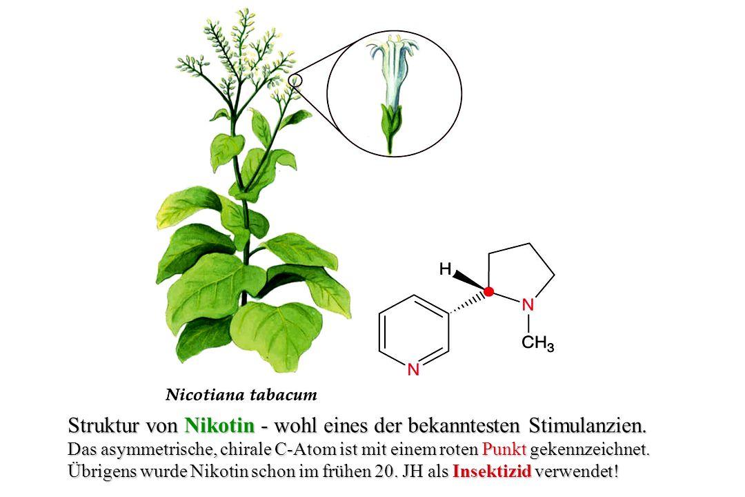 Kokain Struktur des Tropan-Alkaloids Kokain, welches als Stimulans des Zentralnerven- Systems wirkt und entsprechend als Rausch- gift (Halluzinogen) konsumiert wird.