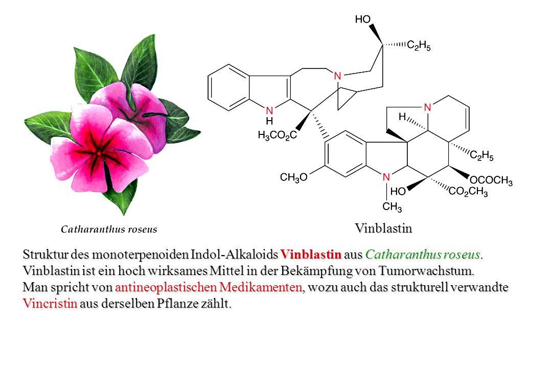 Lupanin Struktur des Chinolizidin-Alkaloids Lupanin aus der bitteren Lupine Lupinus polyphyllus.