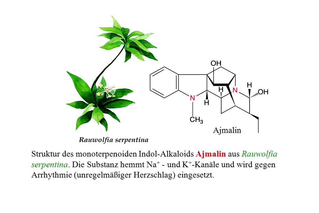 Pilocarpin Das Imidazol-Alkaloid Pilocarpin aus Pilocarpus jaborandi.