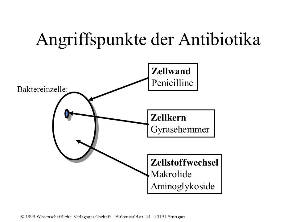 © 1999 Wissenschaftliche Verlagsgesellschaft Birkenwaldstr. 44 70191 Stuttgart Angriffspunkte der Antibiotika Zellwand Penicilline Zellkern Gyrasehemm