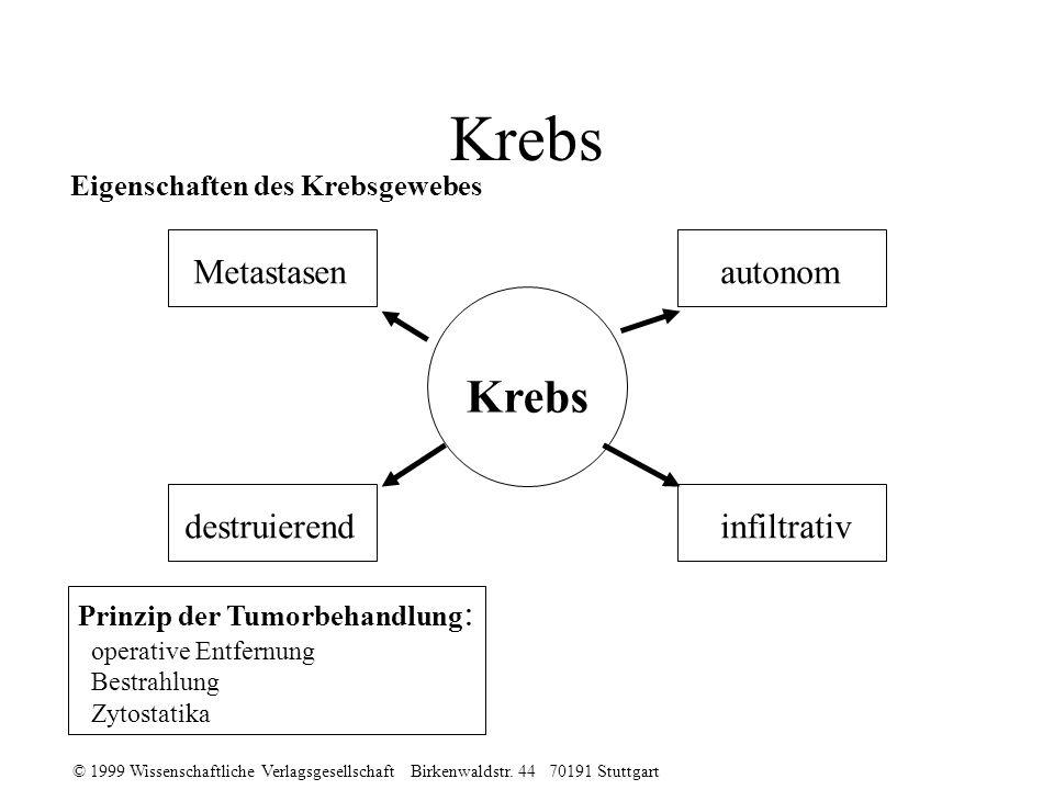 © 1999 Wissenschaftliche Verlagsgesellschaft Birkenwaldstr. 44 70191 Stuttgart Krebs Metastasenautonom destruierendinfiltrativ Eigenschaften des Krebs