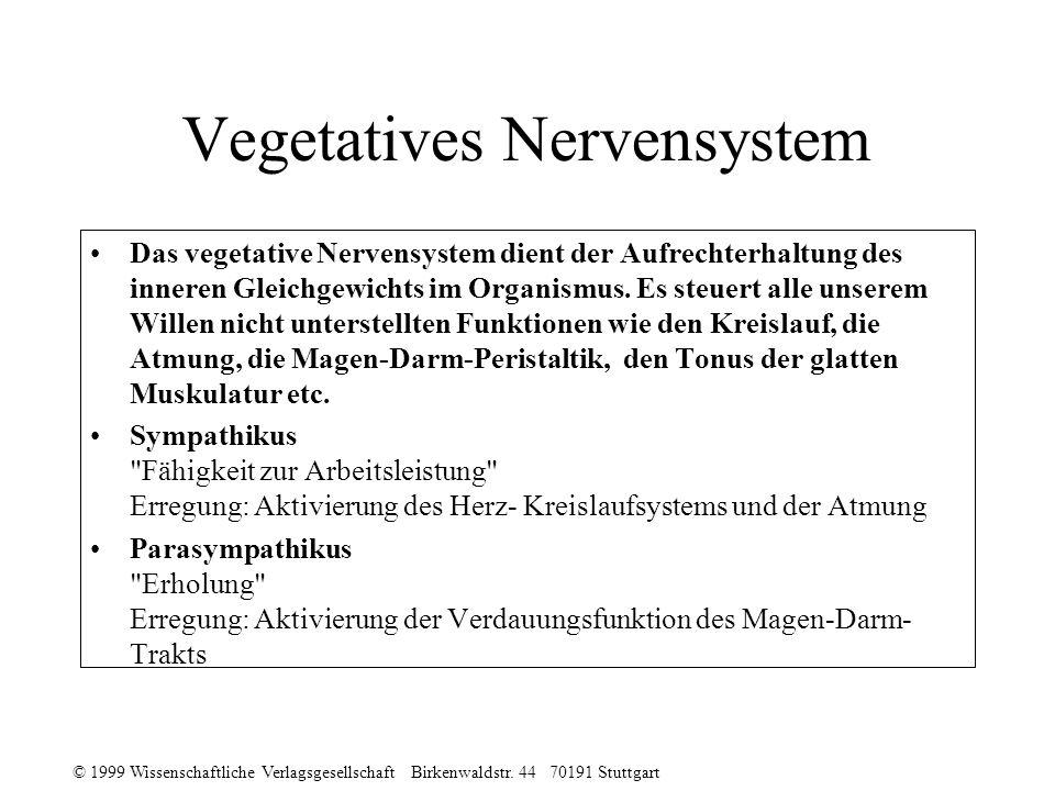 © 1999 Wissenschaftliche Verlagsgesellschaft Birkenwaldstr. 44 70191 Stuttgart Vegetatives Nervensystem Das vegetative Nervensystem dient der Aufrecht