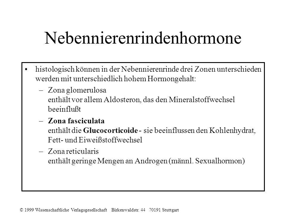 © 1999 Wissenschaftliche Verlagsgesellschaft Birkenwaldstr. 44 70191 Stuttgart Nebennierenrindenhormone histologisch können in der Nebennierenrinde dr