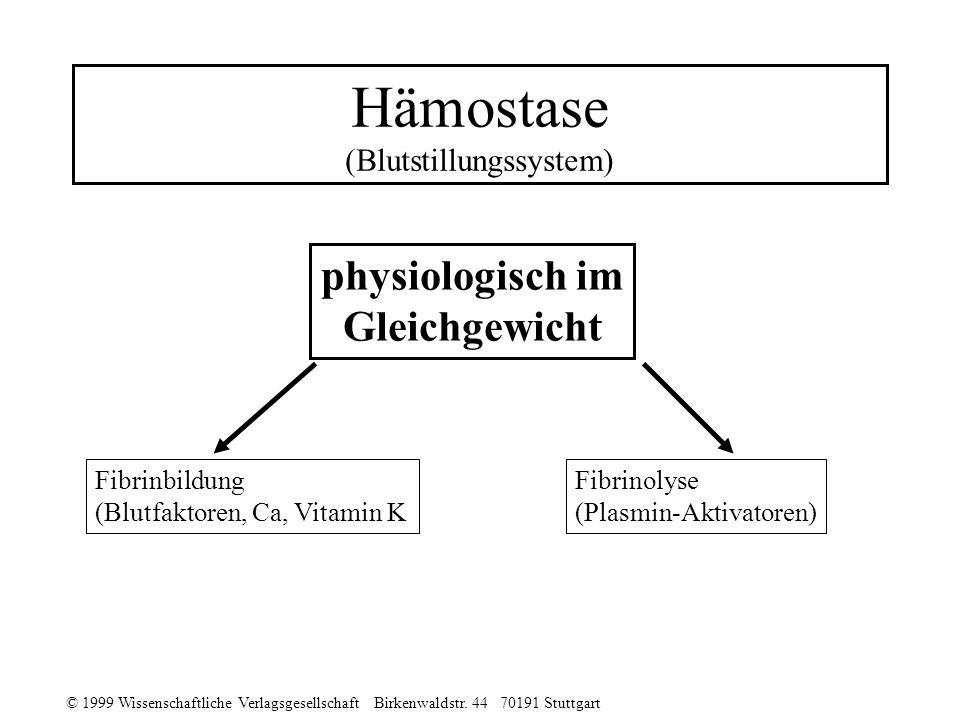 © 1999 Wissenschaftliche Verlagsgesellschaft Birkenwaldstr. 44 70191 Stuttgart Hämostase (Blutstillungssystem) physiologisch im Gleichgewicht Fibrinbi