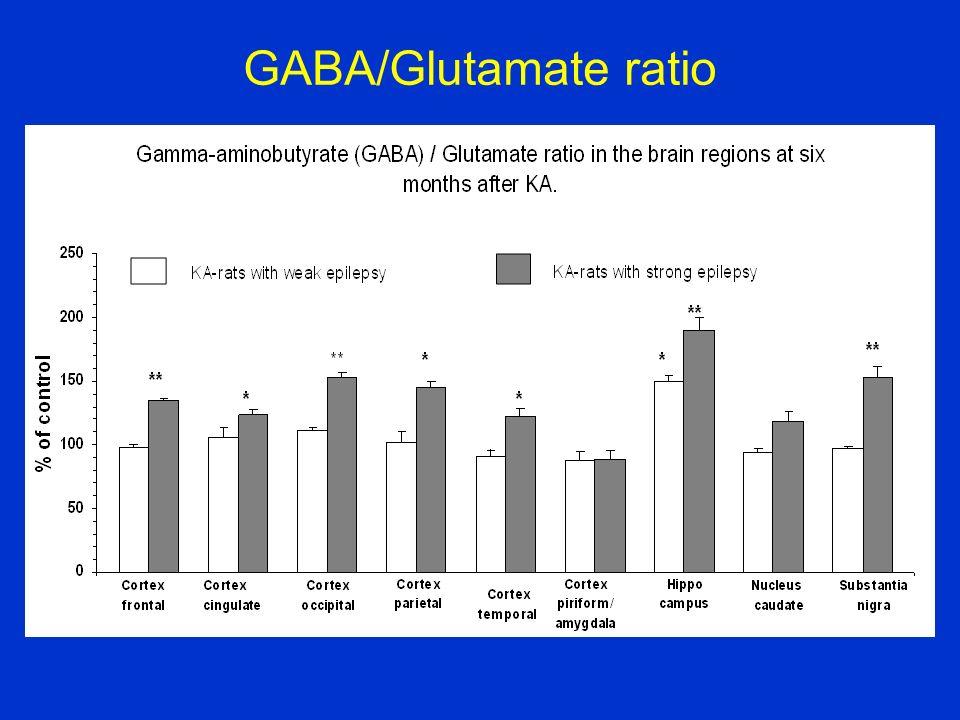 GABA/Glutamate ratio