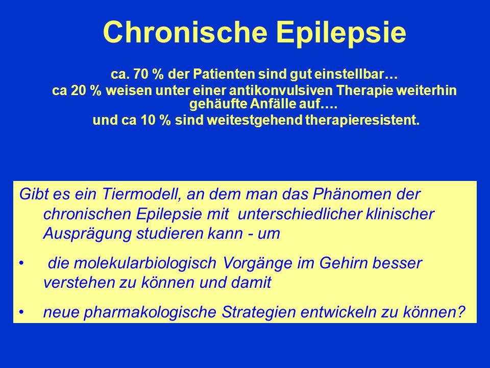 Chronische Epilepsie ca. 70 % der Patienten sind gut einstellbar… ca 20 % weisen unter einer antikonvulsiven Therapie weiterhin gehäufte Anfälle auf….